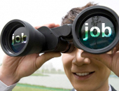 Job Seekers Reflections