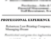 The Professional Experience